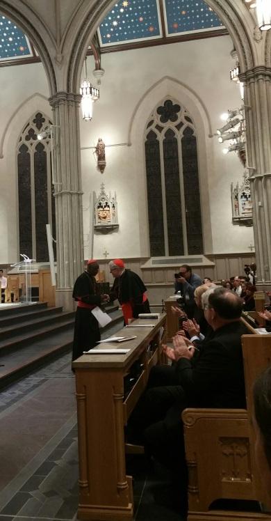 Cardinal Sarah3